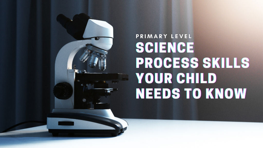 3 Important Science Process Skills Your Child Needs to Know